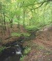 Northumberland National Park - Free Voluntary Ranger led guided walks